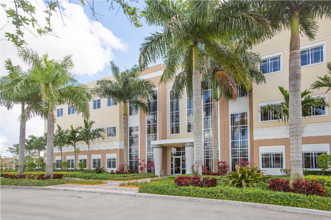 admissions essay for university of miami St thomas university in miami, fl is your path towards a brighter future learn more about stu's acceptance rate, application and admissions process.