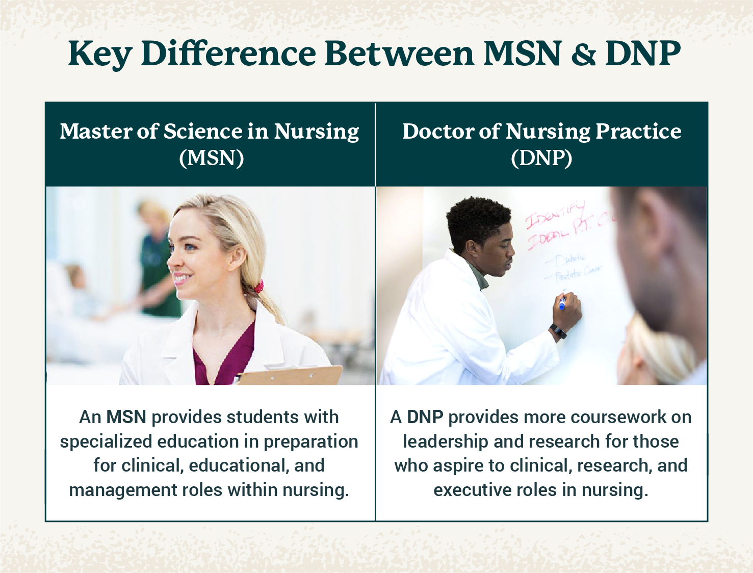 chart showing key difference between MSN and DPN