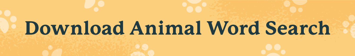download animal word search