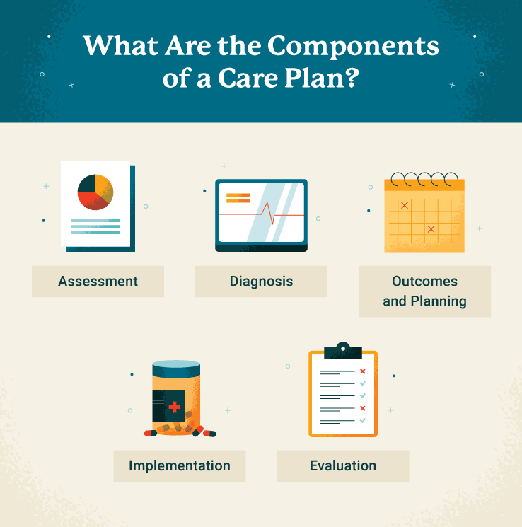 What are the components of a care plan graphic